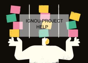 Ignou Project Help
